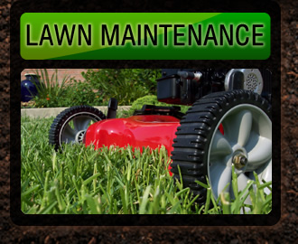 Wall lawn maintenance
